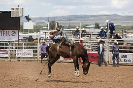 cowboys-1235377__180